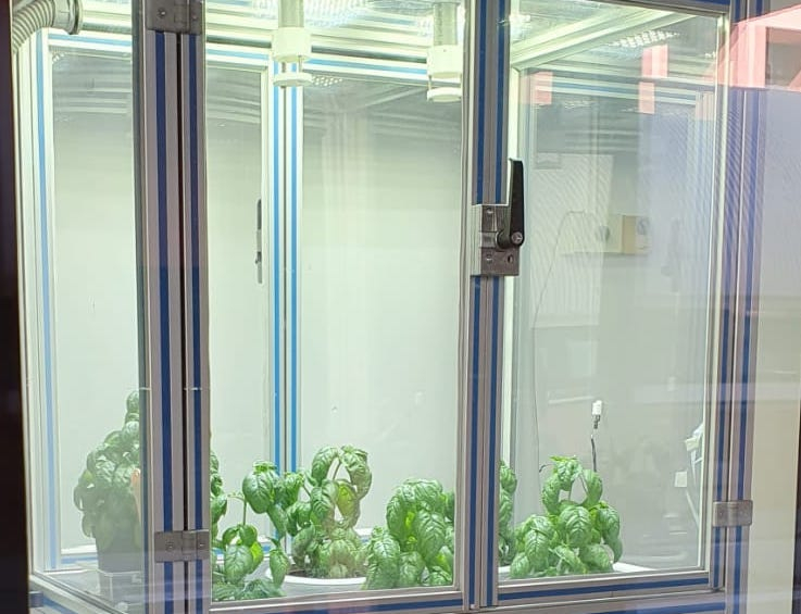 """""""Piano Green"""", start-up for smart agriculture solution, is born"""