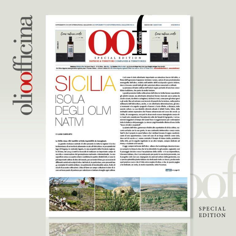 Sicilia. Isola degli olivi nativi