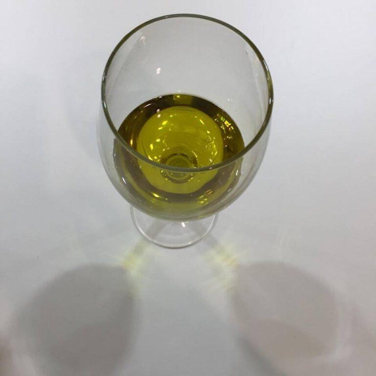 Idrossitirosolo, fenolo dell'olio d'oliva contro l'invecchiamento. Si indaga sulle proprietà  degli extra vergini