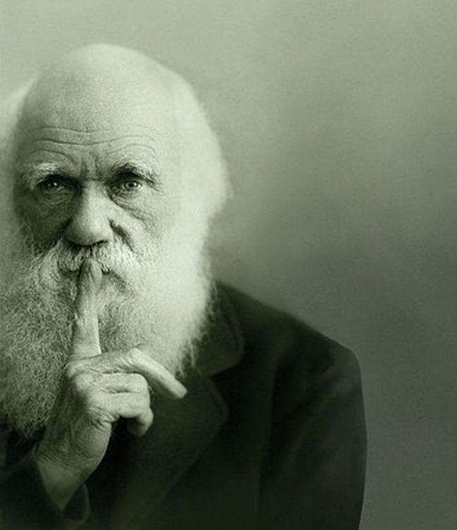 Perché l'evoluzione è vera