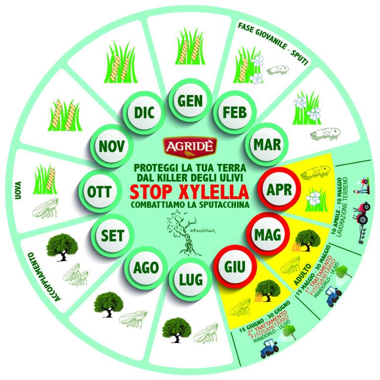 La campagna di informazione di Agridè contro l'avanzamento della Xylella