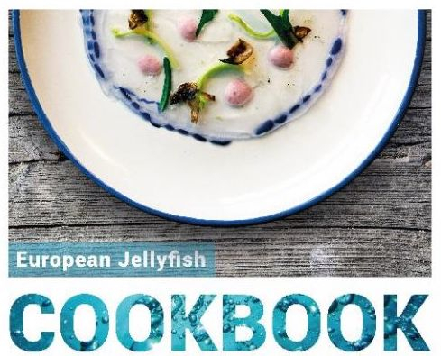 Jellyfish, a sustainable seafood?