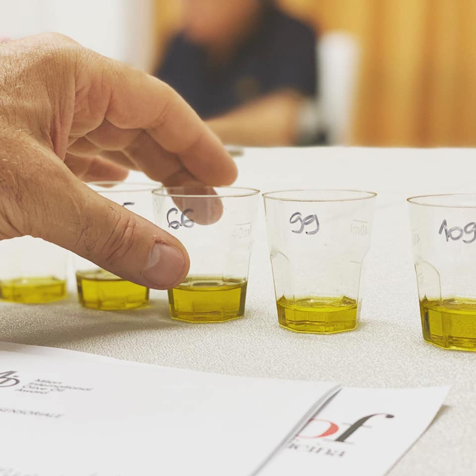 Gli extra vergini finalisti del Milan International Olive Oil Award secondo la giuria sommelier Ais