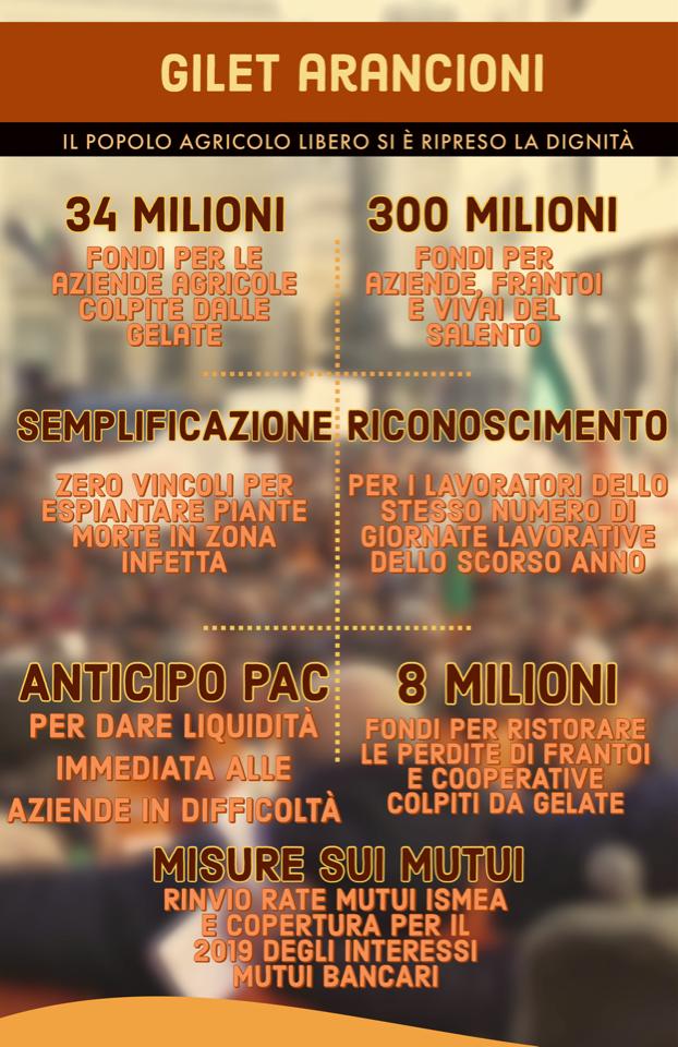 Decreto legge per salvare l'olivicoltura italiana dal baratro, si attende firma del Presidente della Repubblica Mattarella