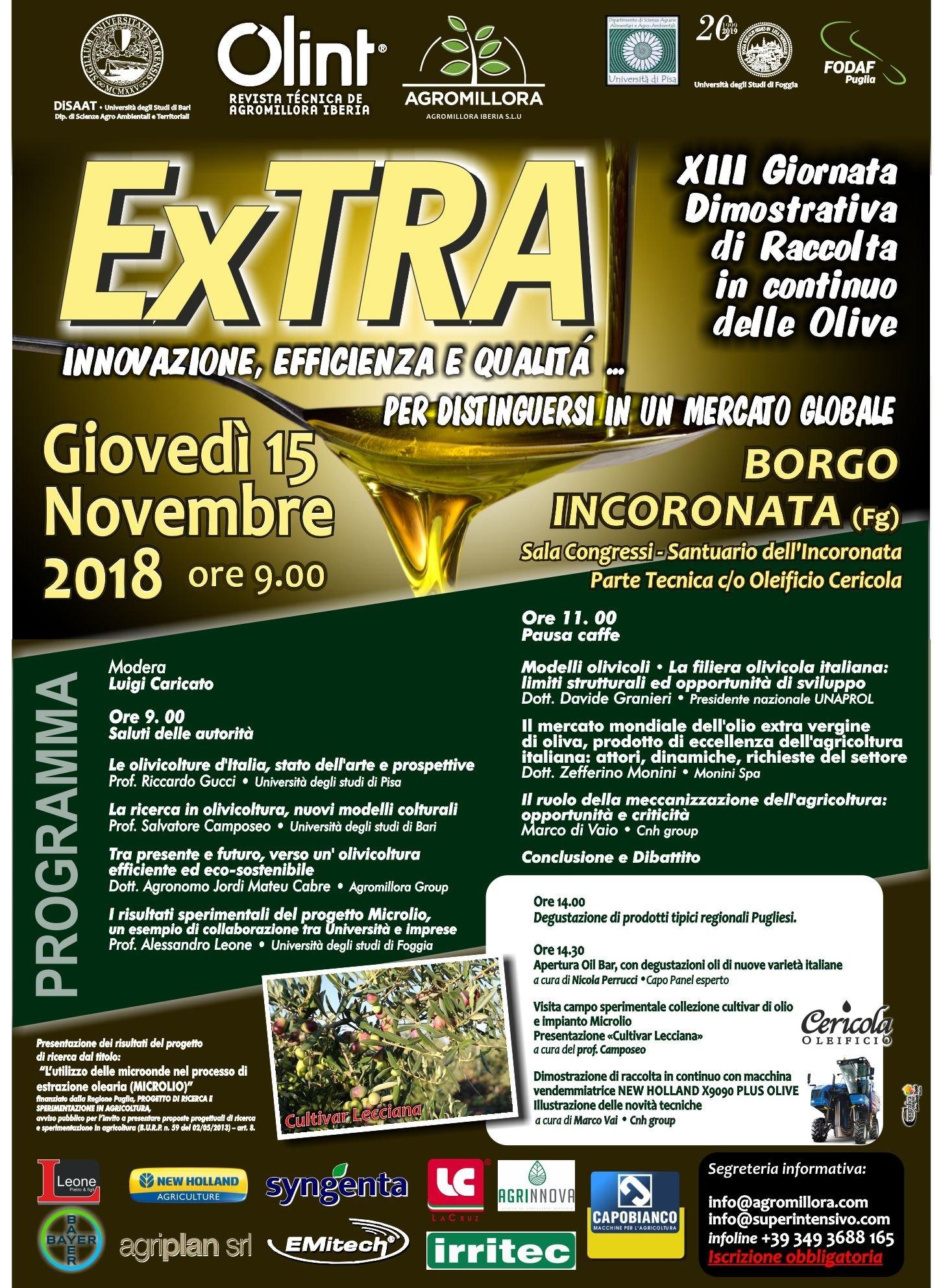 Verso un'olivicoltura efficiente ed eco-sostenibile. Innovazione, efficienza e qualità per distinguersi in un mercato globale