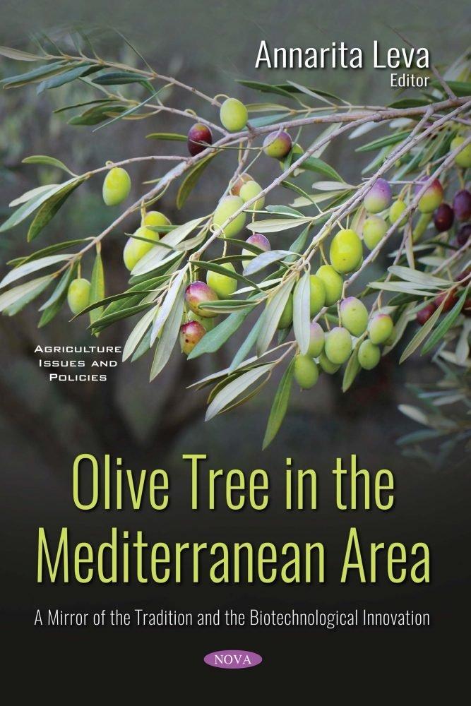 L'olivo nell'area mediterranea