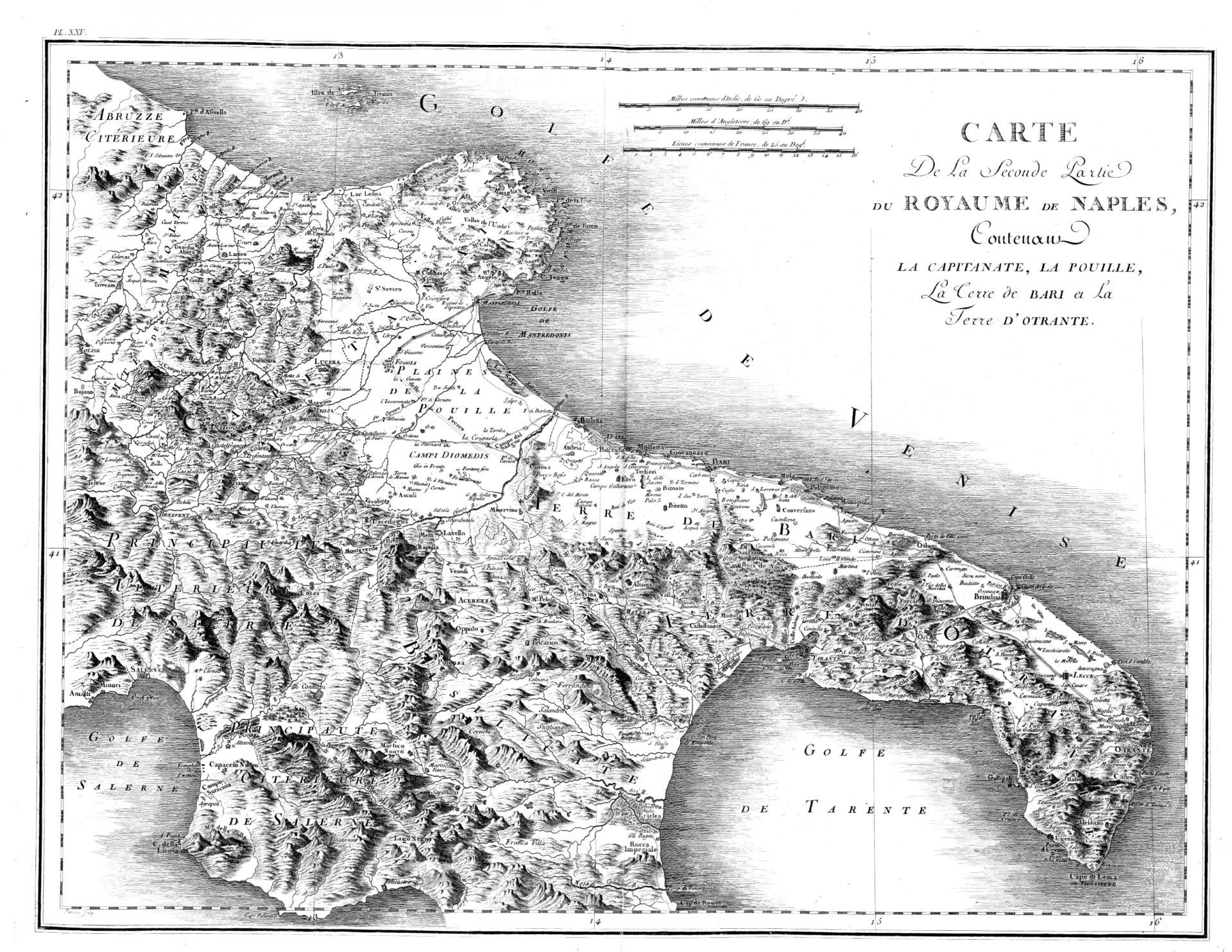 Piante tropicali in Puglia?
