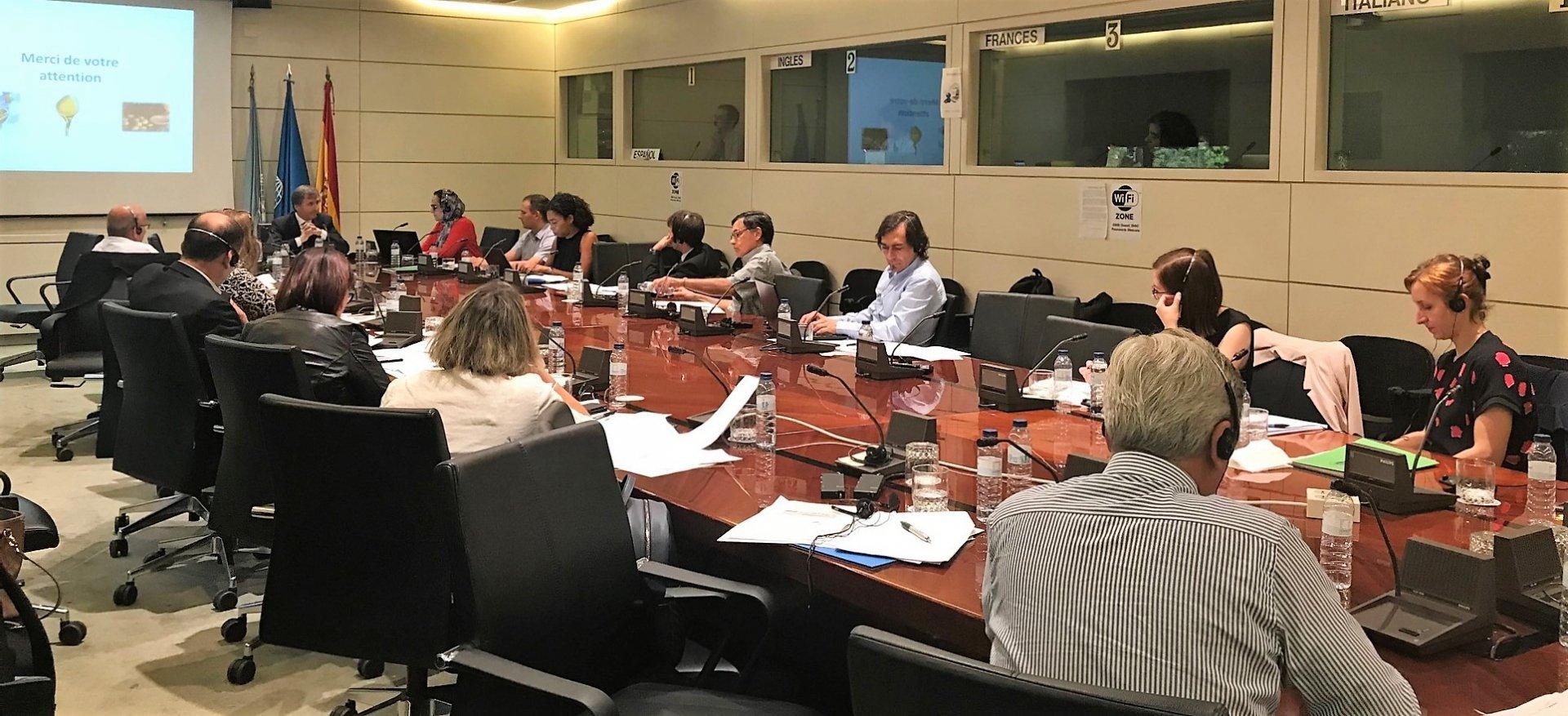 Consiglio oleicolo internazionale, gli esperti di statistica al lavoro per prossima campagna olearia