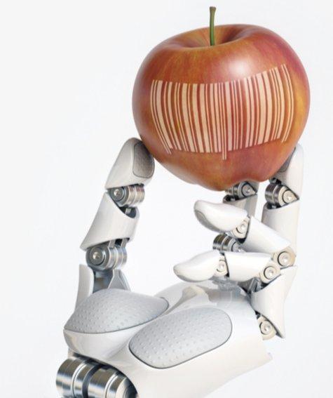 Il cibo del futuro