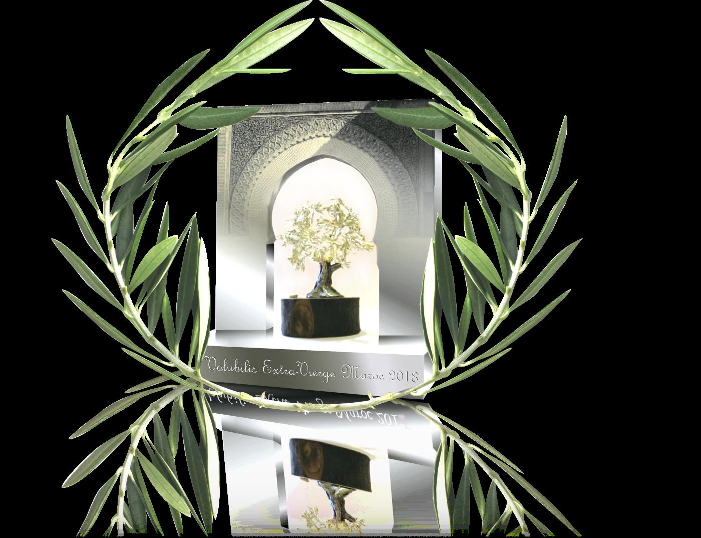 È giunto alla decima edizione il Premio Extra Virgin Volubilis Marocco