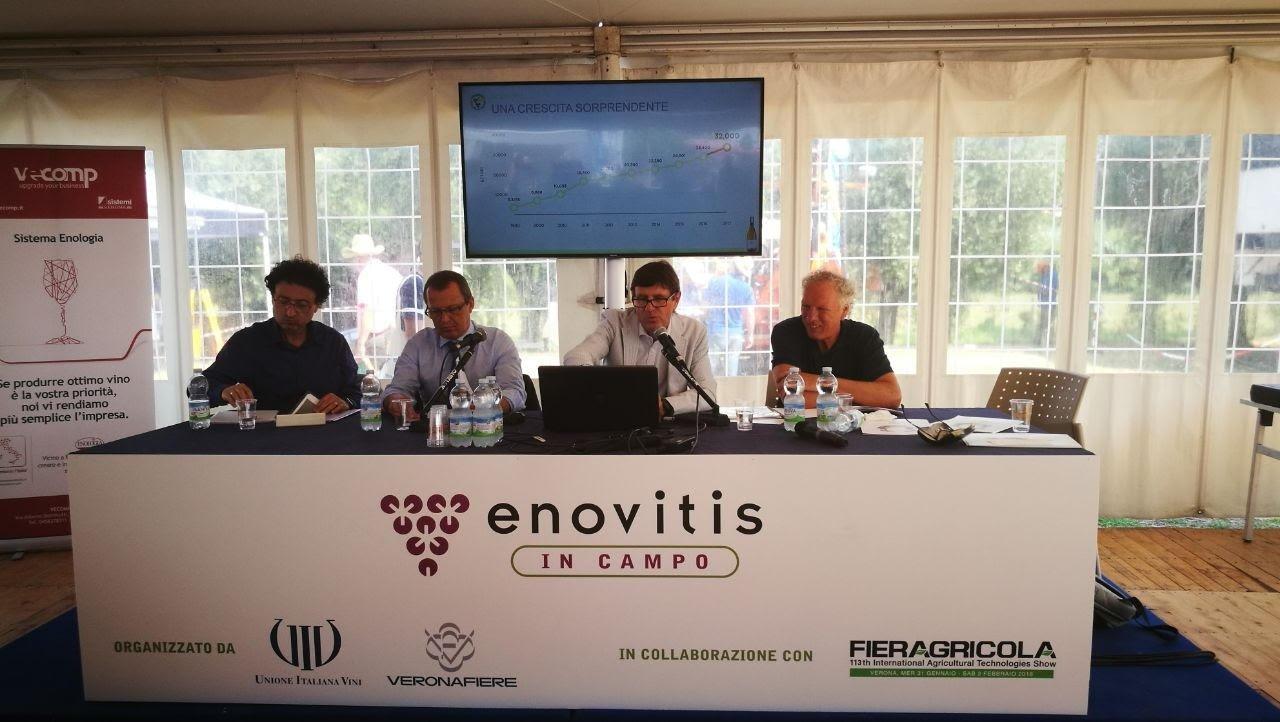 Pinot Grigio delle Venezie: evoluzione qualitativa e aspettative di mercato, un convegno a Enovitis