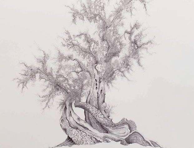 L'ulivo nell'arte