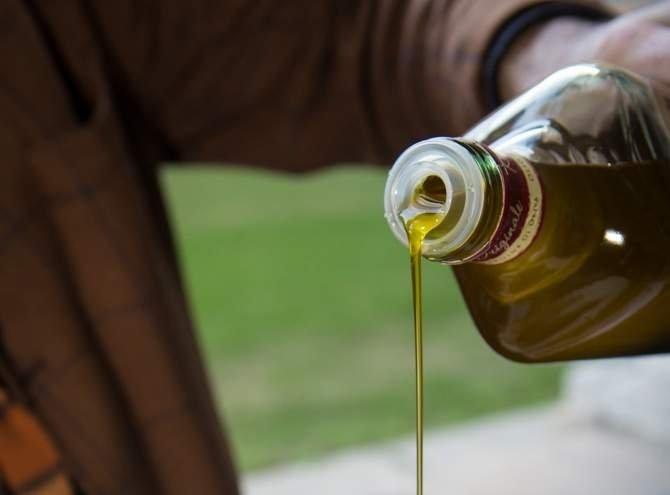 Natale 2016, le famiglie italiane consumeranno oltre 1 kg di olio a testa