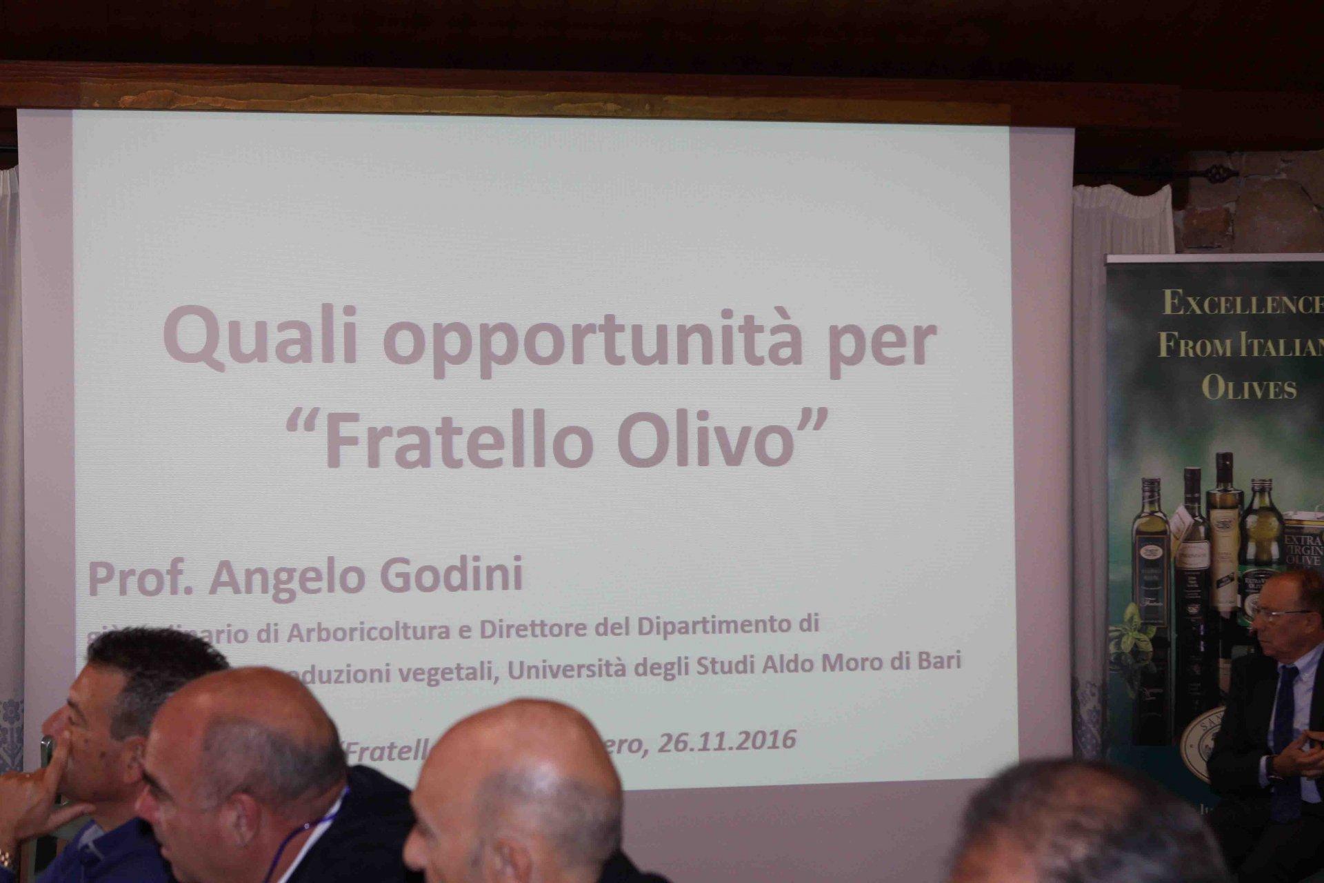 Ad Alghero l'olivicoltura del futuro