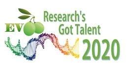 Istituto Nutrizionale Carapelli, sei borse di studio per giovani ricercatori esperti in olio d'oliva