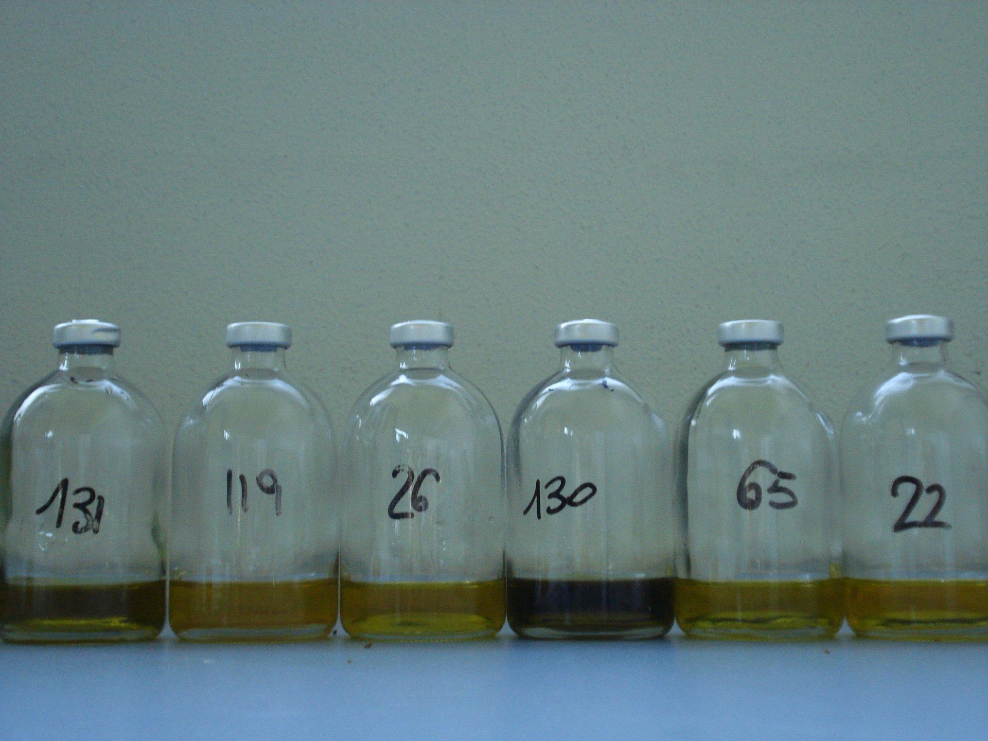 La composizione in acidi grassi