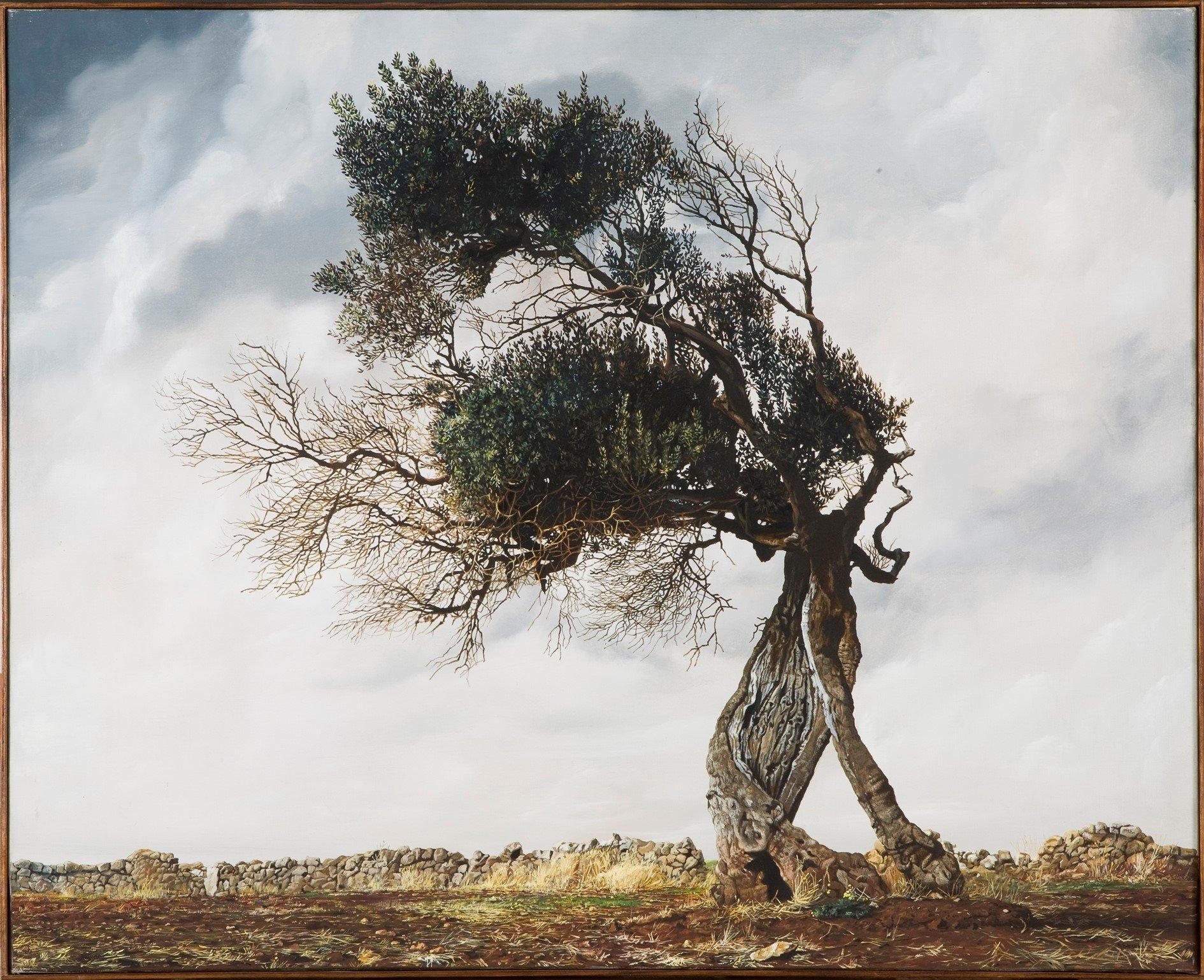La Giornata internazionale della pace in cantina e al Museo dell'olivo e dell'olio a Torgiano