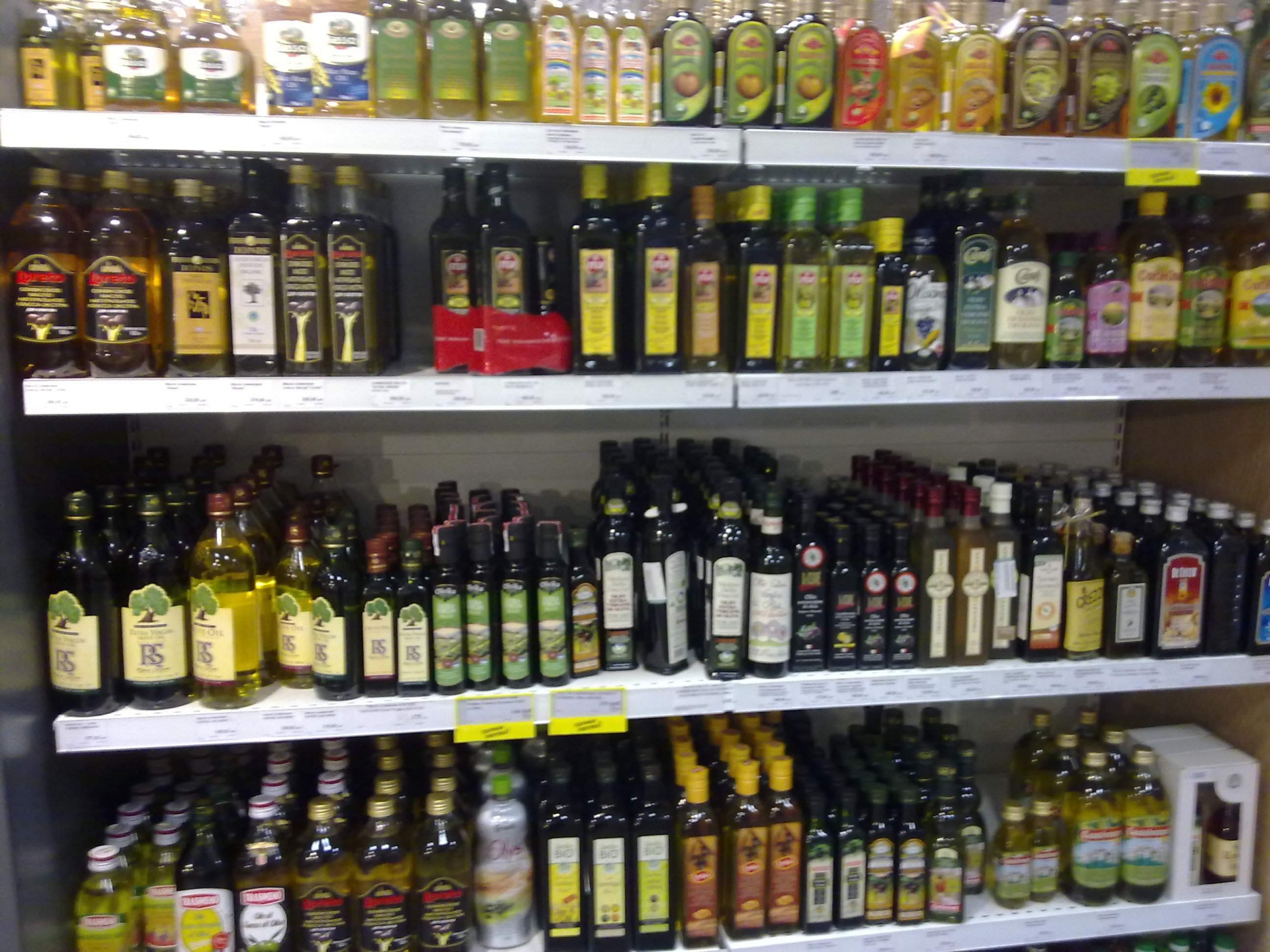 World trade in olive oil 2014-15