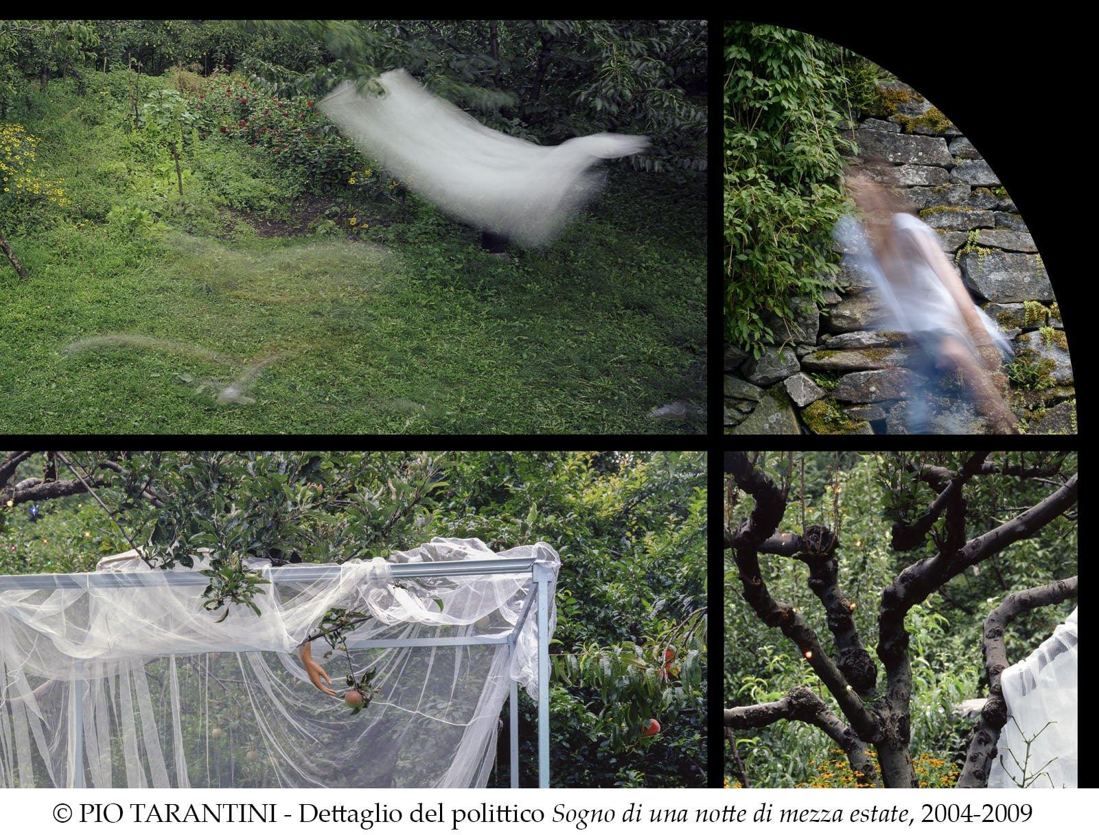 """""""Giardini disobbedienti"""" a Villa Giulia di Verbania"""