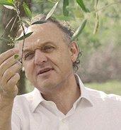 Roberto De Andreis