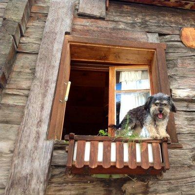 Finbestra con ospite a Zermatt