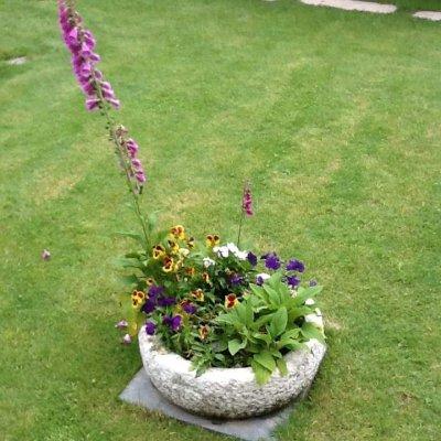 Prato con vaso di fiori in Toscana