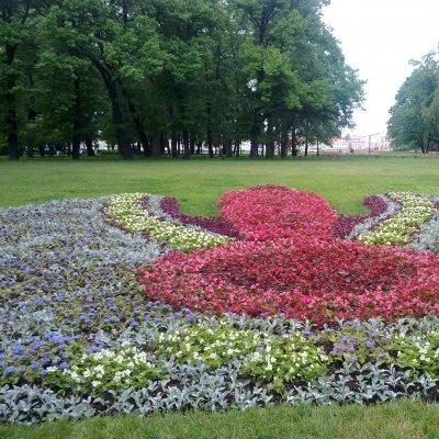 Prato in un parco a San Pietroburgo, con composizioni di fiori