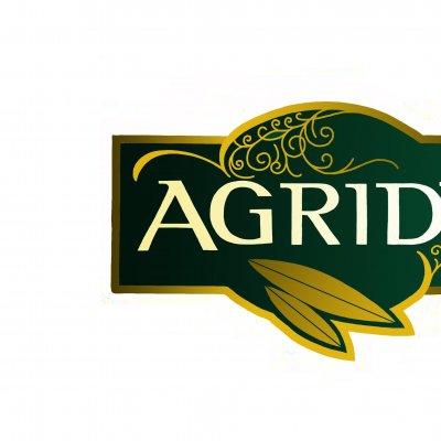 Elaborazione artistica del logo Agridè secondo Valerio Marini