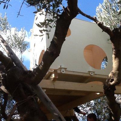La casa sugli olivi