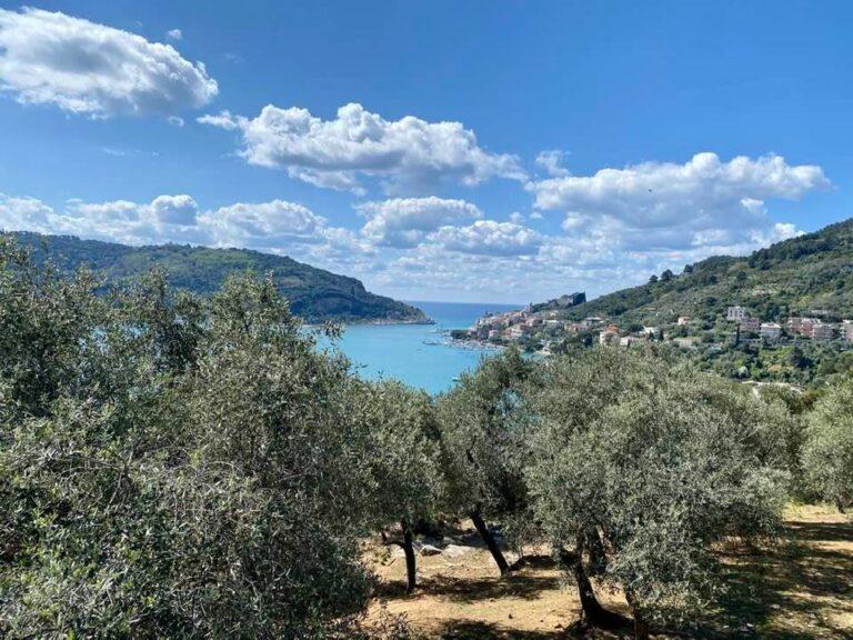 La bellezza tra mare e olivi di Liguria