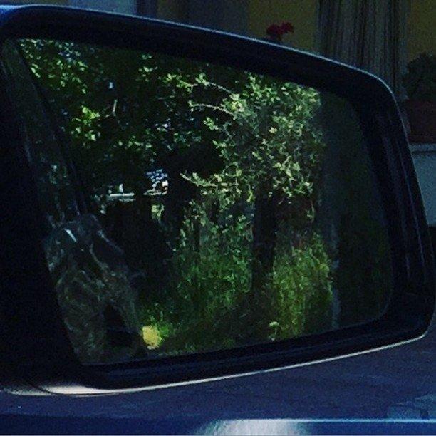 Lo specchietto retrovisore