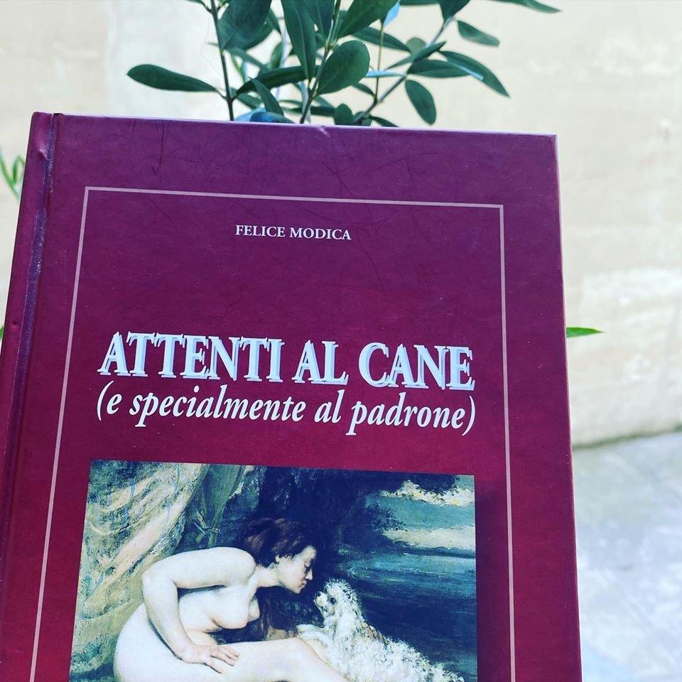 Leggere Felice Modica arricchisce lo spirito