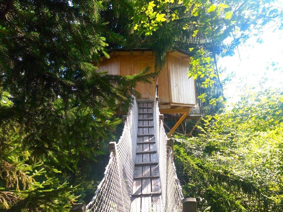 In capanna, sugli alberi