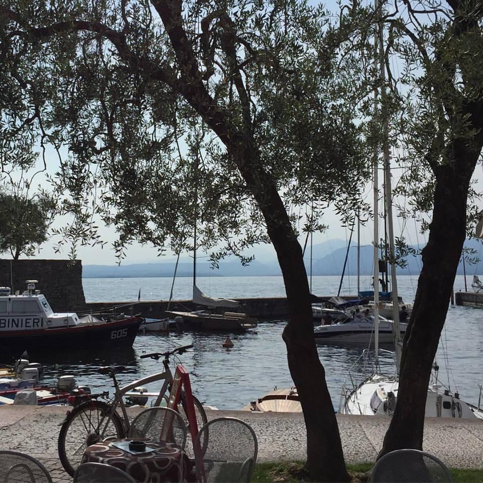 L'olivo e il lago