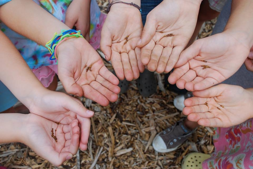 I bambini seminano futuro