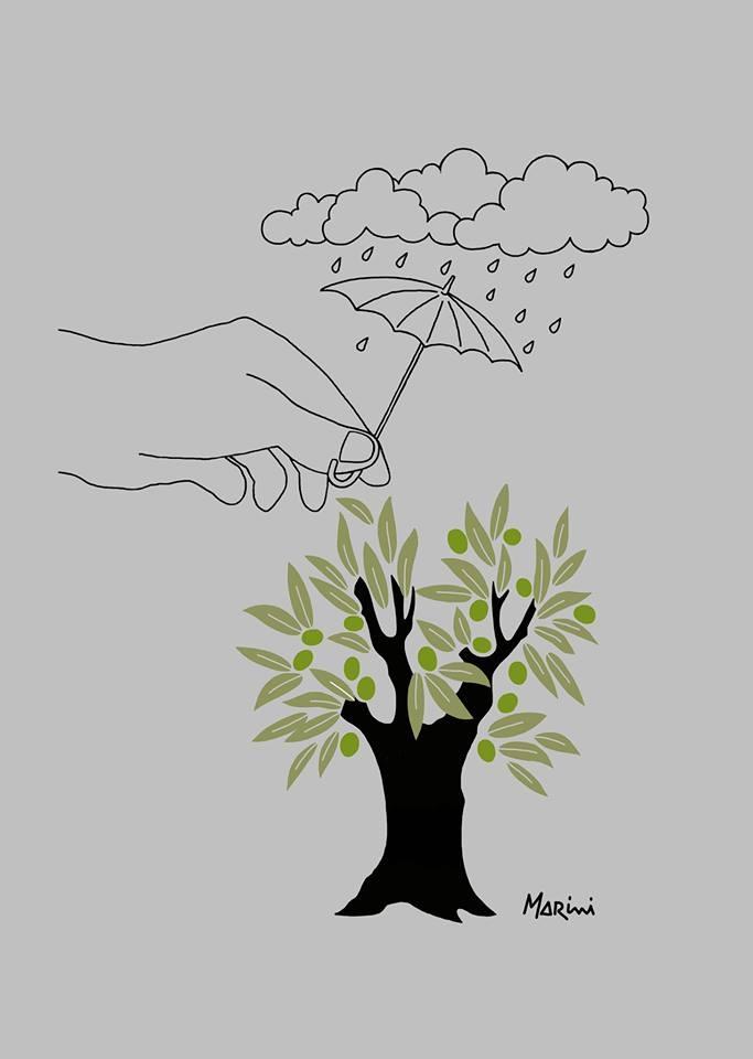 La mano che protegge gli olivi