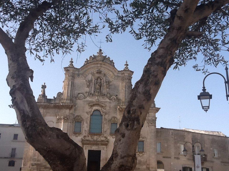 L'olivo e la chiesa