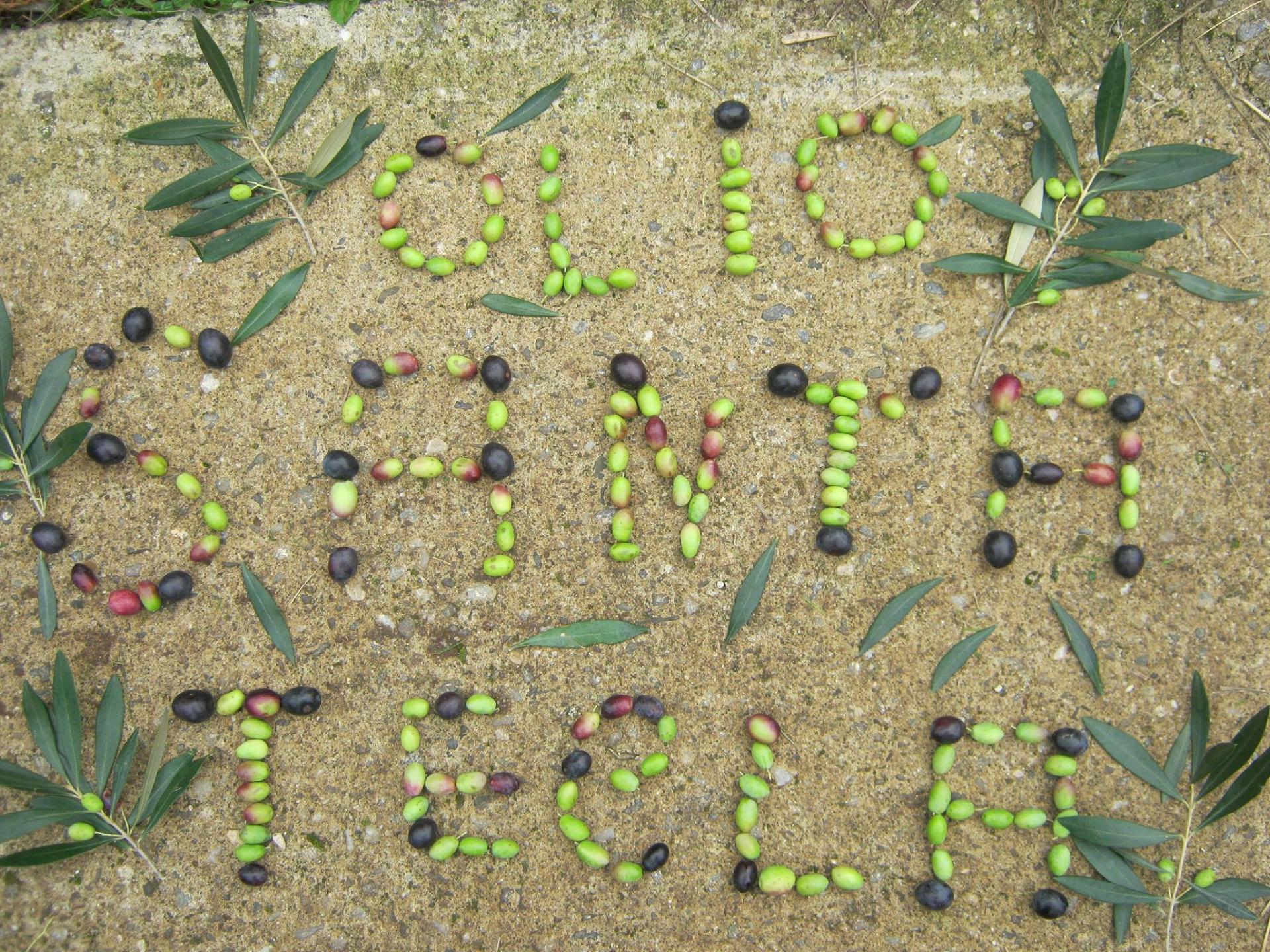 La creatività a partire dalle olive